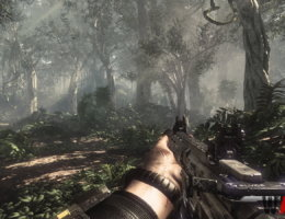 Call of Duty: Ghosts  (3/9)