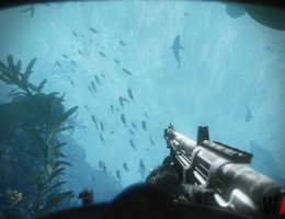 Call of Duty: Ghosts  (7/9)